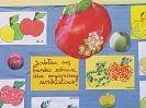 Święto Soczystego Jabłka 2_26